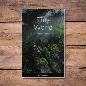 Tiny World cover