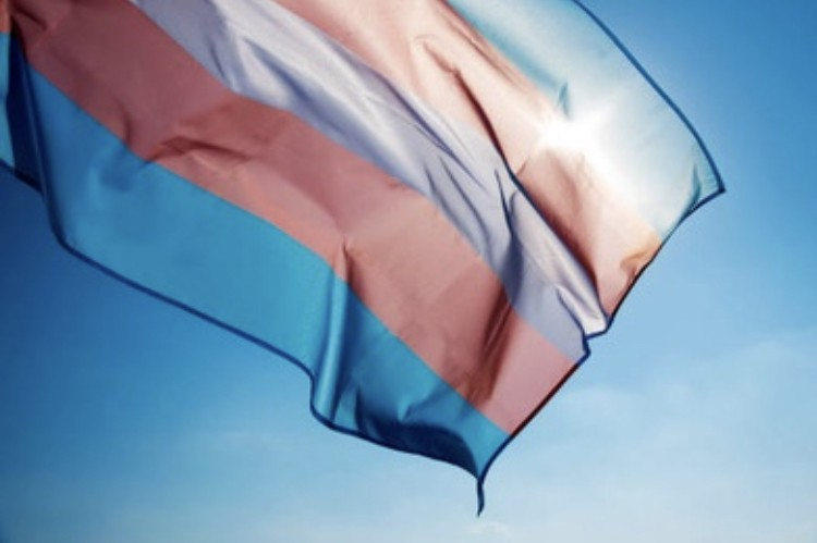 Protecting non-binary and transgender rights in Quebec – Oppose Bill 2